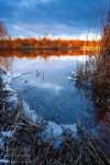 lake, winter, sunset, leipzig, frozen, reed, shoreline, germany, 2013, photo