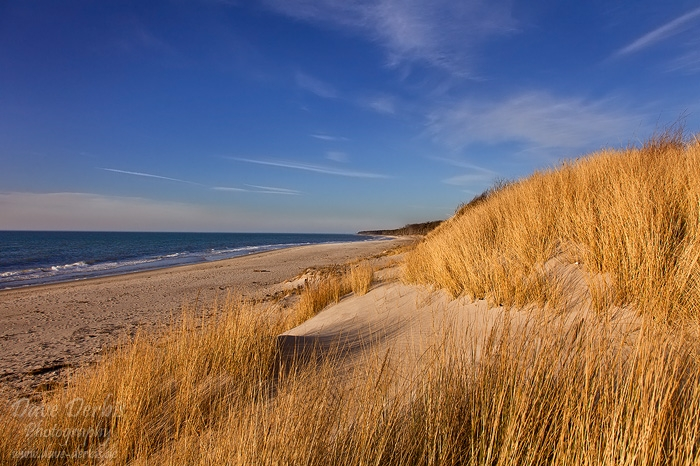 beach, sunset, baltic sea, grass, golden, weststrand, shore, germany, 2014, photo