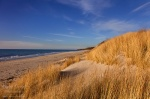 beach, sunset, baltic sea, grass, golden, weststrand, shore, germany, 2014, Germany, photo