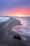 sunset, baltic sea, winter, snow, beach, weststrand, coast, germany, 2015, photo
