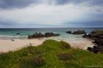 beach, bay, coast, rugged, remote, wildflowers, scotland, 2014, photo