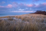 ocean, baltic sea, sunset, weststrand, winter, grass, dune, beach, germany, 2016, photo