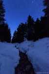 forest, winter, snow, harz, night, stars, stream, germany, photo