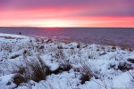 beach, winter, snow, sunset, coast, germany, photo