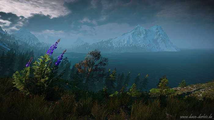 witcher 3, game, ingame, photography, screenshot, skellige, 2016, photo