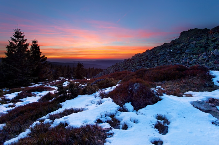 sunset, winter, summit, snow, valley, trees, harz, germany, 2014, photo