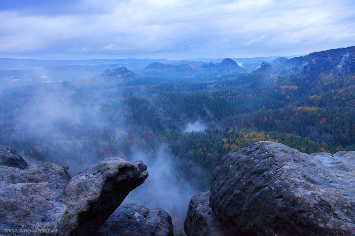 forest, sunset, blue hour, autumn, saxon switzerland, germany, photo